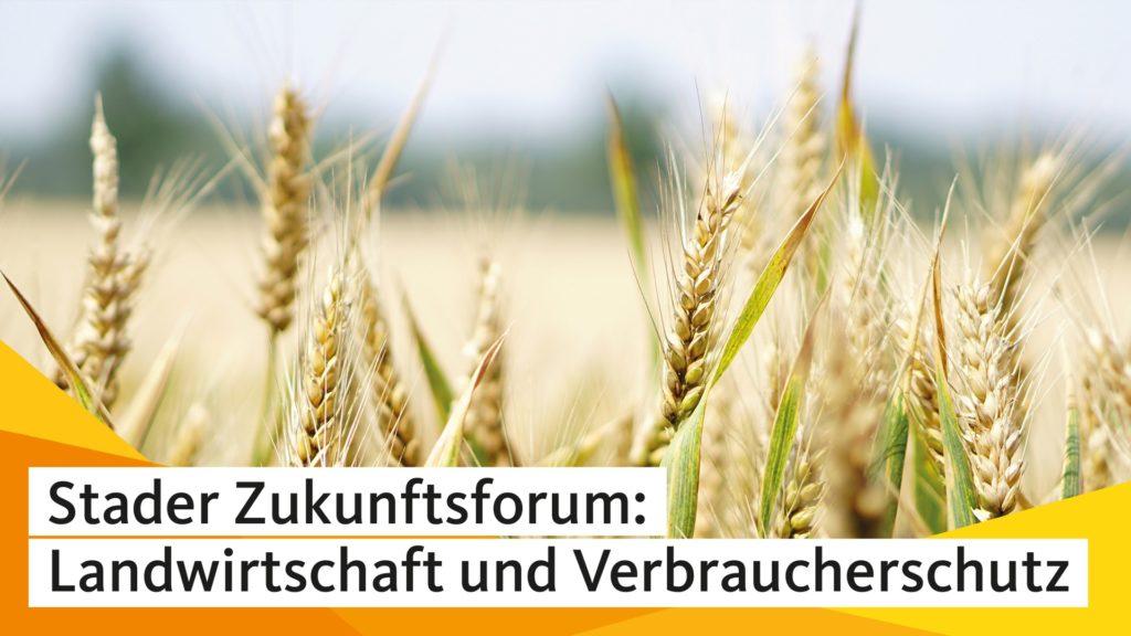 Stader Zukunftsforum: Landwirtschaft und Verbraucherschutz